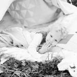 A tent in the woods ~Sneak Peek