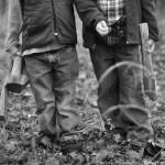 Sneak Peek ~My Lumberjacks