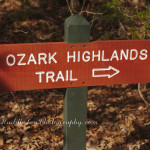 Devil's Den State Park ~Part 2