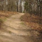 Wilson Trail, Keystone Ancient Forest ~Prue, OK