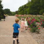 Woodward Park and the Linnaeus Teaching Gardens ~Tulsa, OK