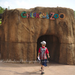 Wild Kratts has ruined the zoo for my children…