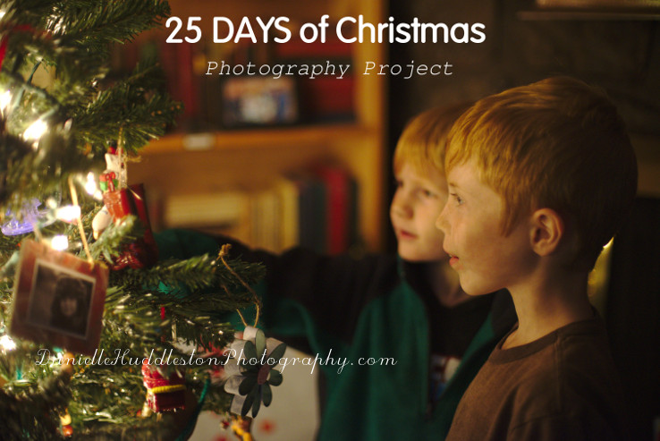 25 Days of Christmas ~daniellehuddlestonphotography.com
