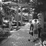 Linnaeus Teaching Garden Tour ~Tulsa, Ok