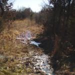 Heyburn Lake ~Rattlesnake Trail