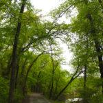 Rainy Days ~Deep Fork Wildlife Refuge *updated with pics of all my kids