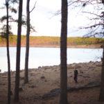 McGee State Park ~Atoka, OK
